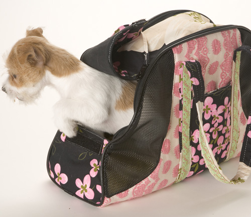 SHOPPING | Transportation Doggie Style « fabulously green